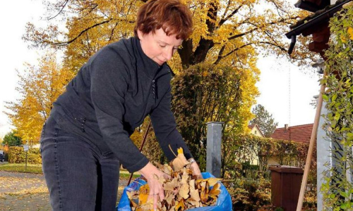 Выбрасывать не надо: что сделать с опавшей листвой